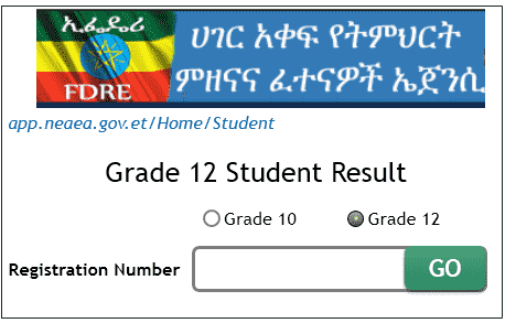 Ethiopia Grade 12 result 2019- Placement Entrance Student