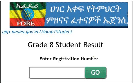 www.nae.gov.et grade 8 result