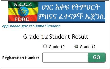 www.nae.gov.et grade 12 exam result 2019