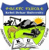 Kabri Dehar University